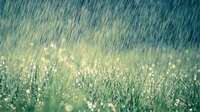 Mesatarja e reshjeve të shiut për muajin korrik në qytete europiane, edhe Prishtina në mesin e tyre