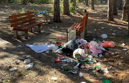 Krimi mjedisor: Ja si duket parku Te Pishat e Sllatinës në fundjavë [Foto]