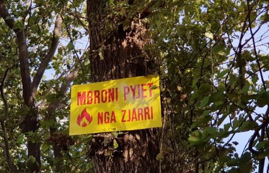 Elbasan, vendosen tabela ndërgjegjësuese kundër zjarreve në zonat e mbrojtura