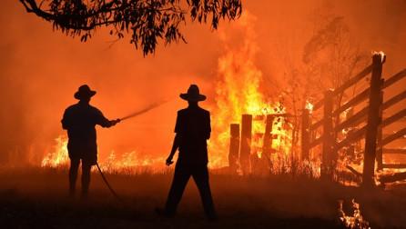 Në foto: Zjarret në Australi