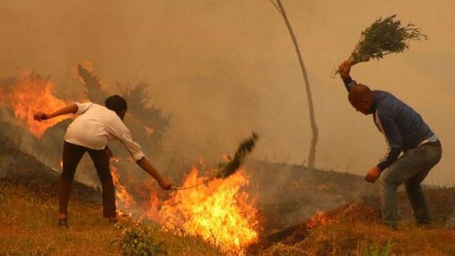 Nepali përfshihet nga zjarret më të rënda në një dekadë