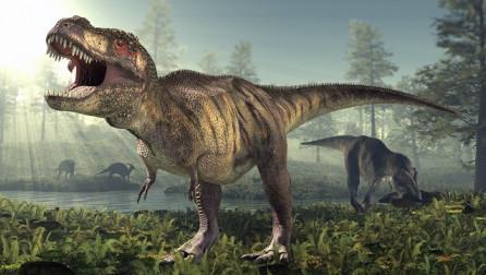 Hulumtimi: Në botë kanë jetuar 2.5 miliard dinozaurë të llojit T-rex