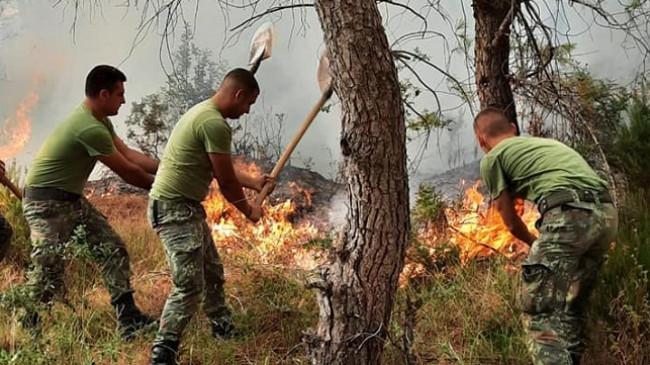 Karaburuni nën flakë/ S'ka ndërhyrje nga ajri, 40 ushtarë ndihmojnë zjarrfikësit