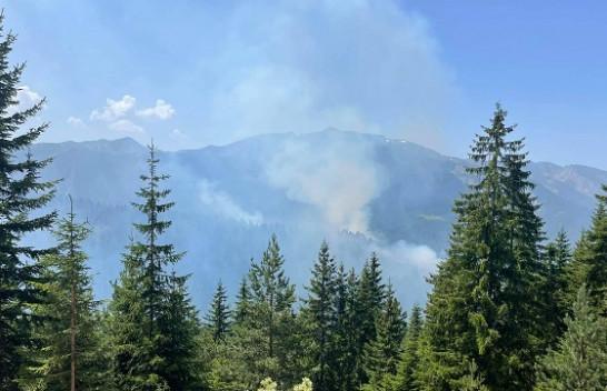 Zjarr në Parkun Kombëtarë 'Bjeshkët e Nemuna', bëhet thirrje për mbrojtjen e pyjeve