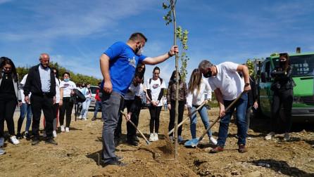Mbillen drunj e largohet deponia e mbeturinave në Duhël të Suharekës